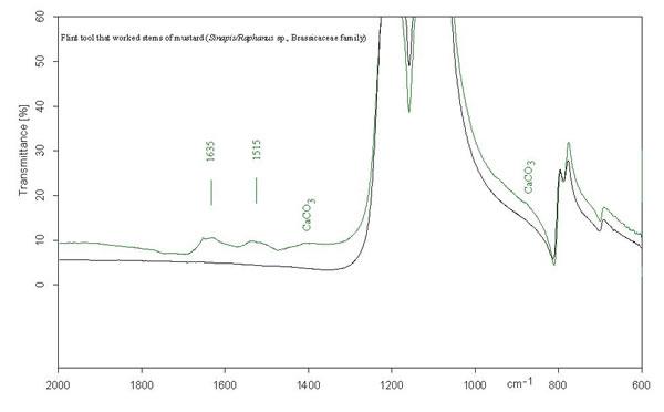 FTIR Spectroscopy Spectrum